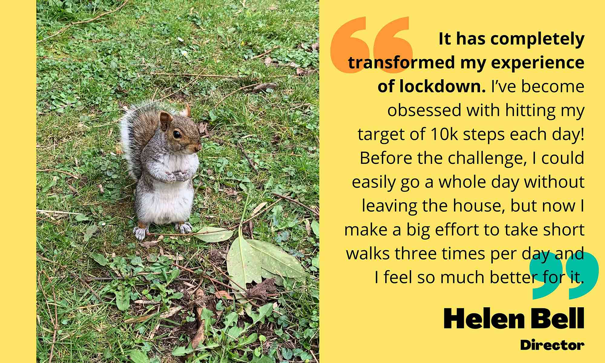 Photo of squirrel on left side, quote on right side from Helen Bell