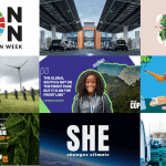 Our top 12 environmental campaigns of 2020