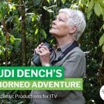Join Dame Judi Dench on a wild Borneo adventure at VIP film screening