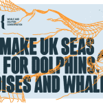 #GoodbyeBycatch: Making UK seas safer for dolphins, porpoises and whales